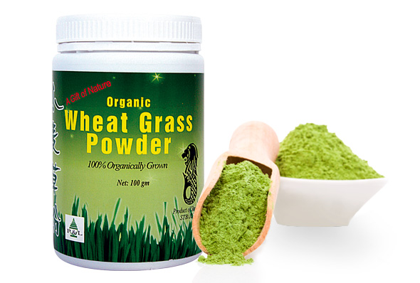 590x398px_Wheat-Grass-Powder1